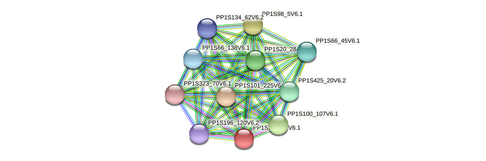 PP1S197_67V6.1 protein (Physcomitrella patens) - STRING interaction network