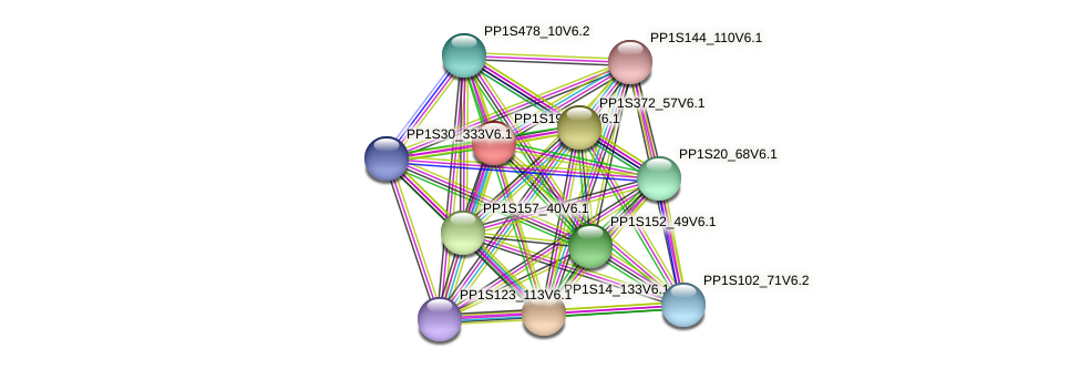 PP1S197_69V6.1 protein (Physcomitrella patens) - STRING interaction network