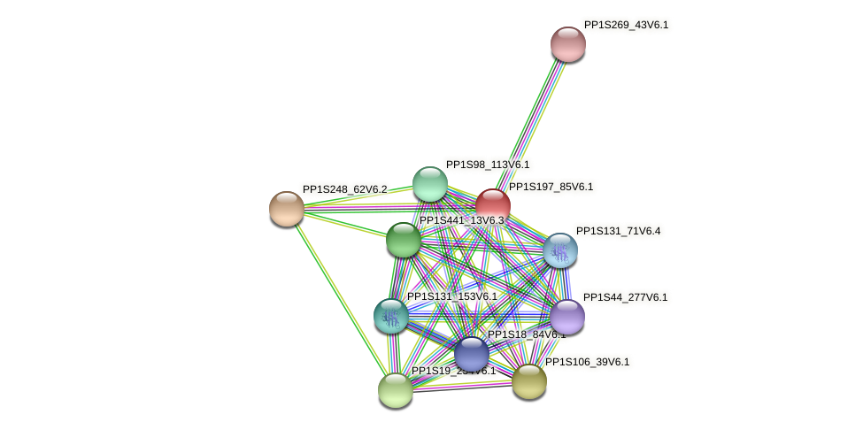 PP1S197_85V6.1 protein (Physcomitrella patens) - STRING interaction network