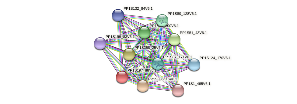 PP1S197_88V6.1 protein (Physcomitrella patens) - STRING interaction network