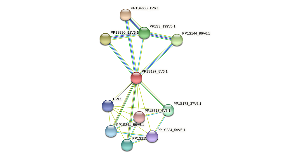 PP1S197_8V6.1 protein (Physcomitrella patens) - STRING interaction network