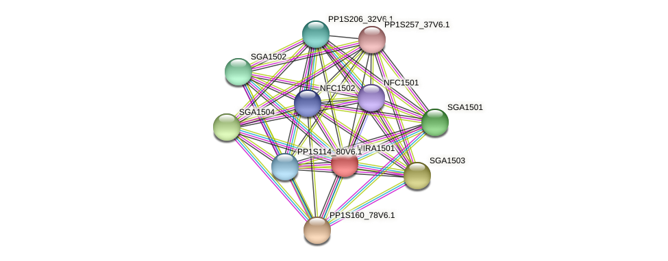 HIRA1501 protein (Physcomitrella patens) - STRING interaction network