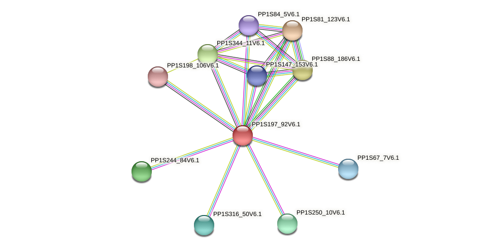 PP1S197_92V6.1 protein (Physcomitrella patens) - STRING interaction network