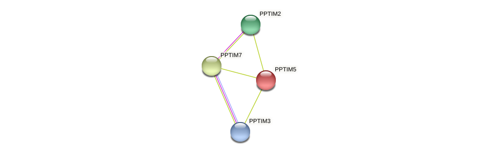 PPTIM5 protein (Physcomitrella patens) - STRING interaction network