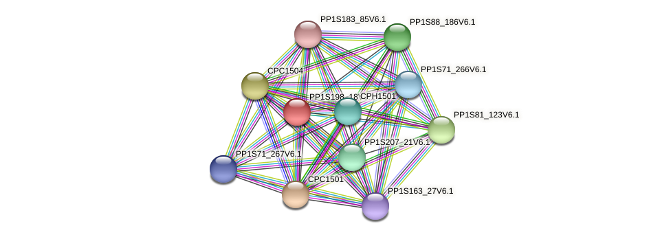 CPD1501 protein (Physcomitrella patens) - STRING interaction network