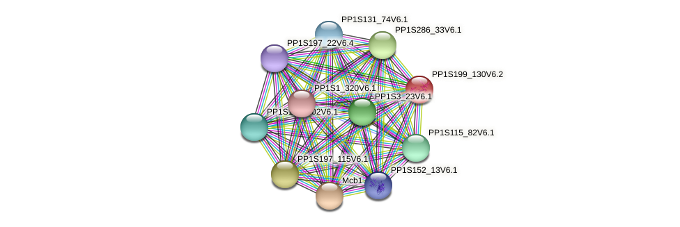 PP1S199_130V6.2 protein (Physcomitrella patens) - STRING interaction network