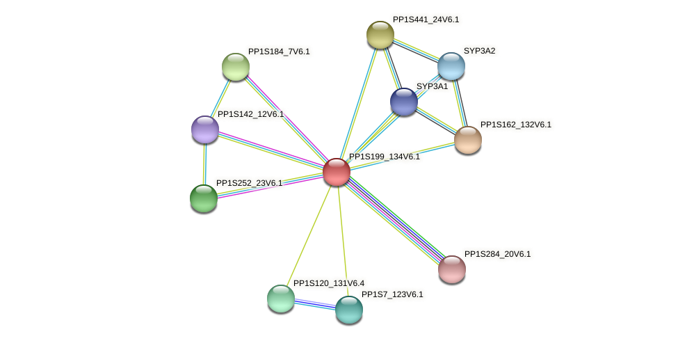 PP1S199_134V6.1 protein (Physcomitrella patens) - STRING interaction network