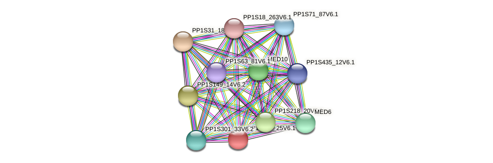 PP1S199_25V6.1 protein (Physcomitrella patens) - STRING interaction network