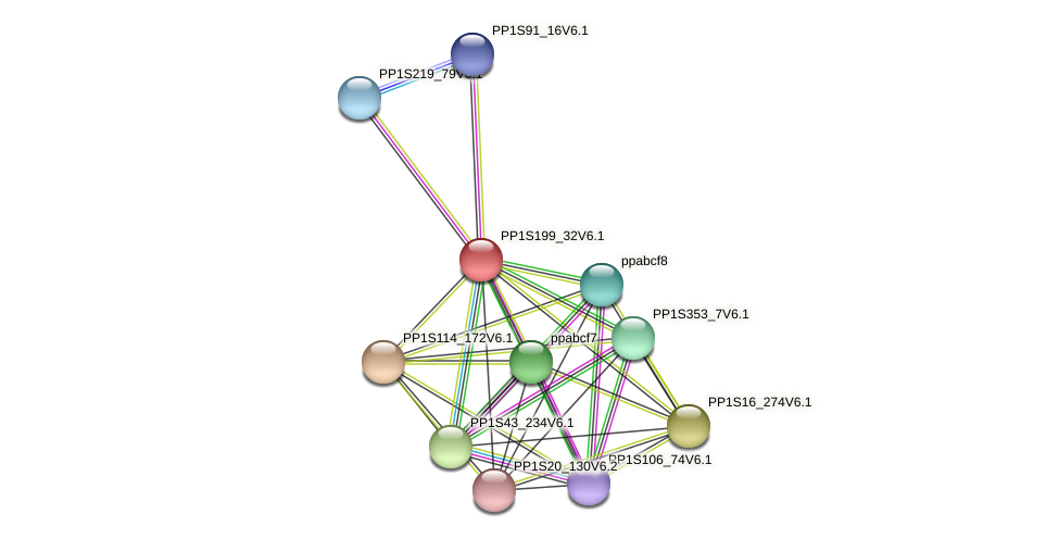 PP1S199_32V6.1 protein (Physcomitrella patens) - STRING interaction network