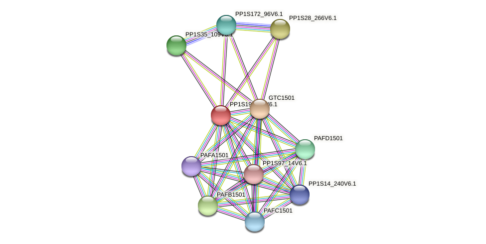 PP1S199_36V6.1 protein (Physcomitrella patens) - STRING interaction network