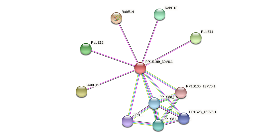 PP1S199_39V6.1 protein (Physcomitrella patens) - STRING interaction network