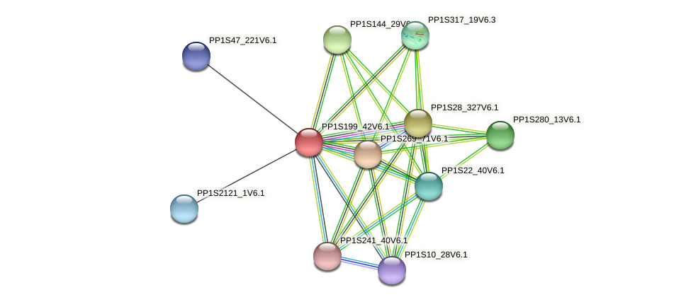 PP1S199_42V6.1 protein (Physcomitrella patens) - STRING interaction network