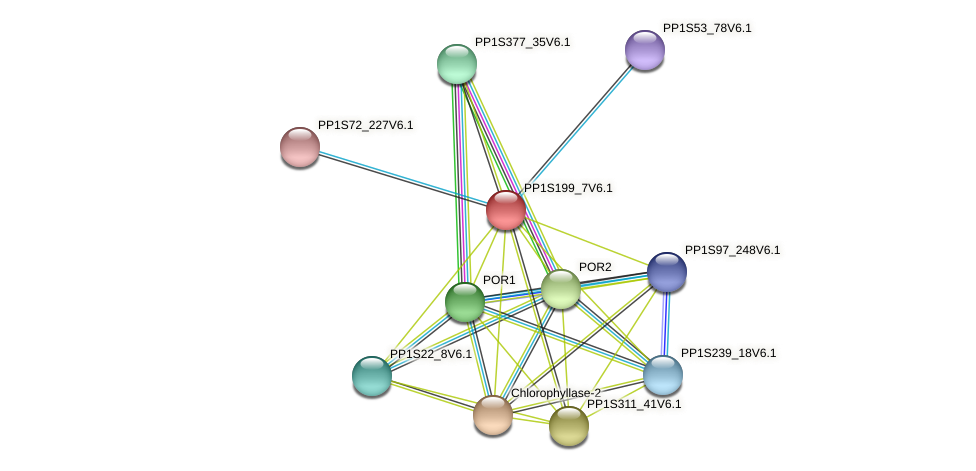 PP1S199_7V6.1 protein (Physcomitrella patens) - STRING interaction network