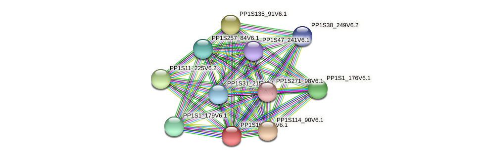 PP1S199_88V6.1 protein (Physcomitrella patens) - STRING interaction network