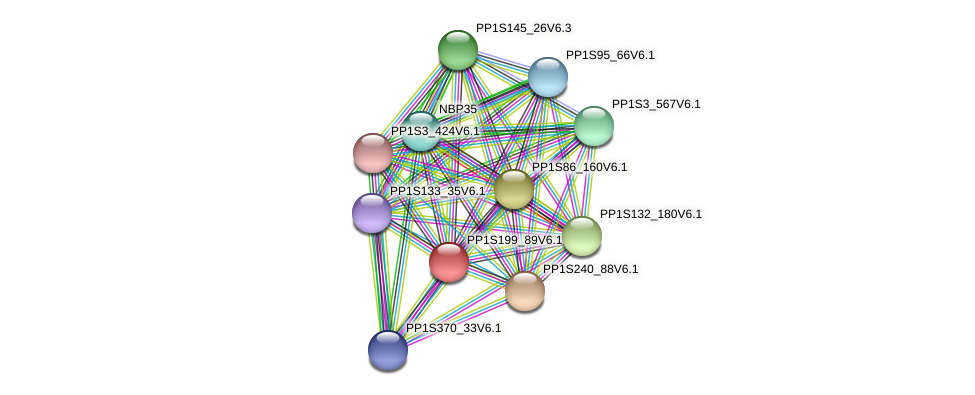 PP1S199_89V6.1 protein (Physcomitrella patens) - STRING interaction network