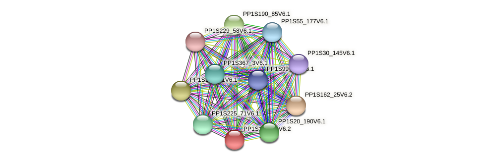 PP1S199_90V6.1 protein (Physcomitrella patens) - STRING interaction network