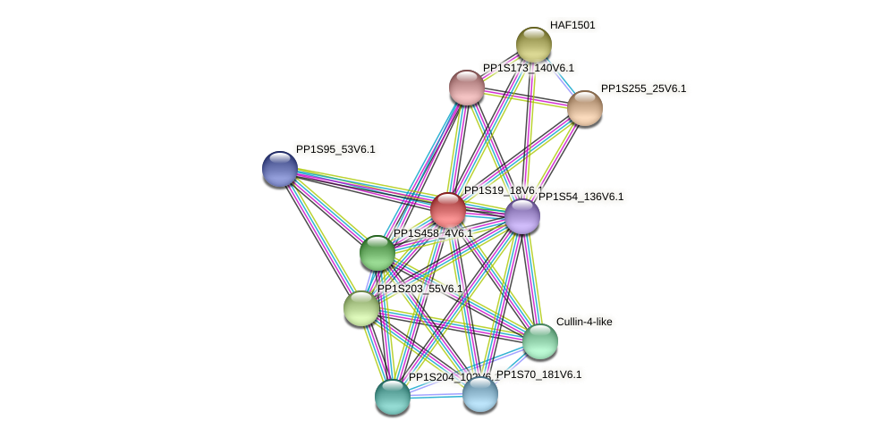 BRWD1501 protein (Physcomitrella patens) - STRING interaction network