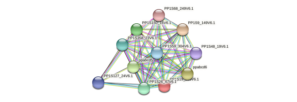 PP1S19_265V6.1 protein (Physcomitrella patens) - STRING interaction network