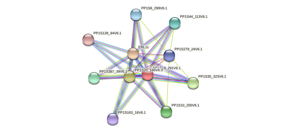 PP1S19_291V6.1 protein (Physcomitrella patens) - STRING interaction network