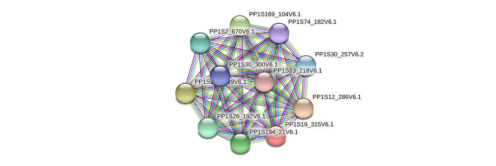 PP1S19_315V6.1 protein (Physcomitrella patens) - STRING interaction network