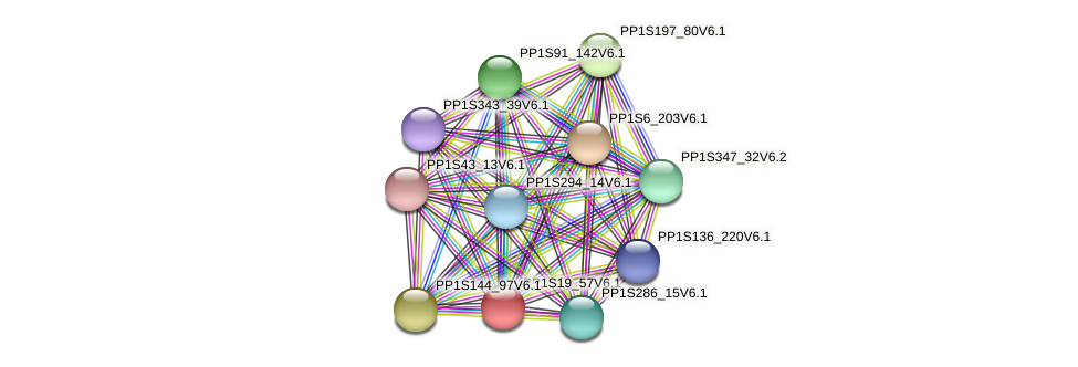PP1S19_57V6.1 protein (Physcomitrella patens) - STRING interaction network