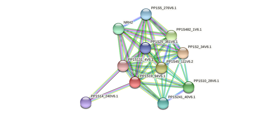 PP1S19_94V6.1 protein (Physcomitrella patens) - STRING interaction network