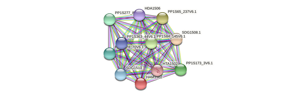 PP1S1_162V6.2 protein (Physcomitrella patens) - STRING interaction network