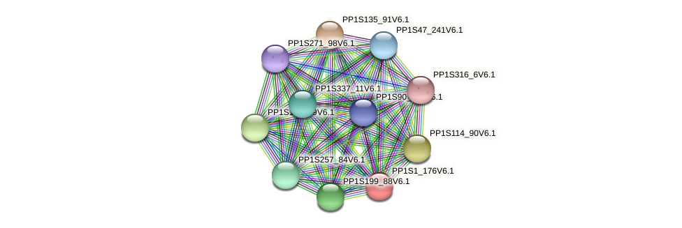 PP1S1_176V6.1 protein (Physcomitrella patens) - STRING interaction network