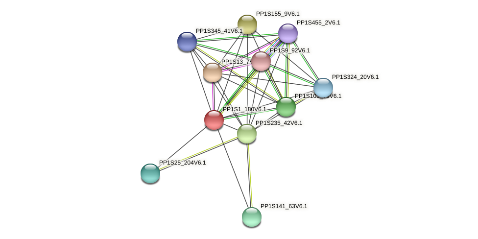 PP1S1_180V6.1 protein (Physcomitrella patens) - STRING interaction network