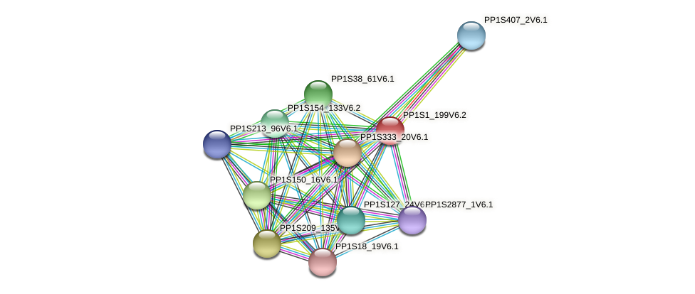 PP1S1_199V6.1 protein (Physcomitrella patens) - STRING interaction network