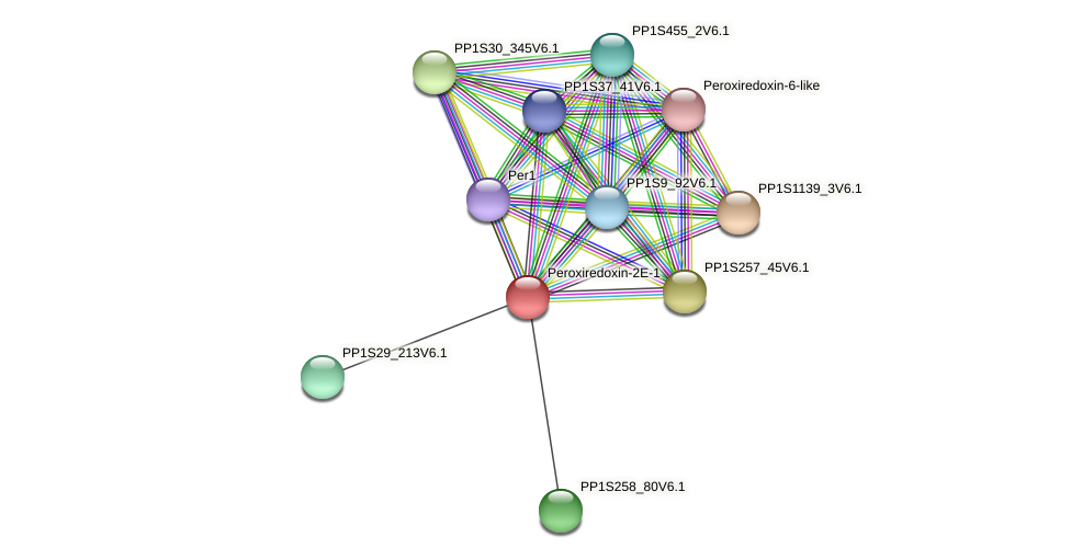 PP1S1_231V6.1 protein (Physcomitrella patens) - STRING interaction network