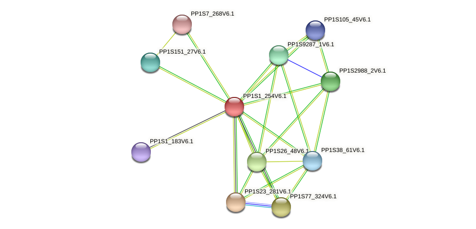 PP1S1_254V6.1 protein (Physcomitrella patens) - STRING interaction network