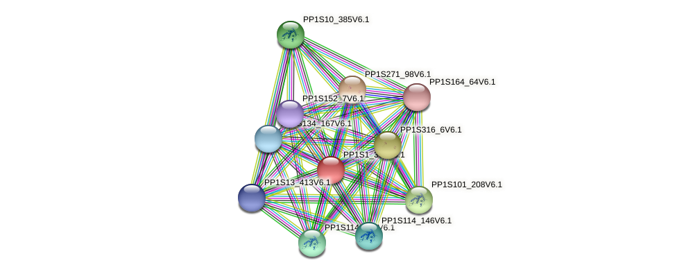 PP1S1_304V6.1 protein (Physcomitrella patens) - STRING interaction network