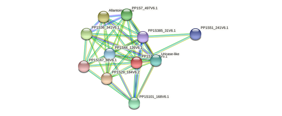 PP1S1_309V6.1 protein (Physcomitrella patens) - STRING interaction network