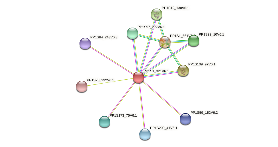 PP1S1_321V6.1 protein (Physcomitrella patens) - STRING interaction network