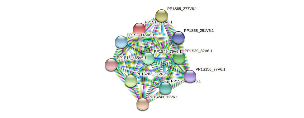 PP1S1_372V6.1 protein (Physcomitrella patens) - STRING interaction network
