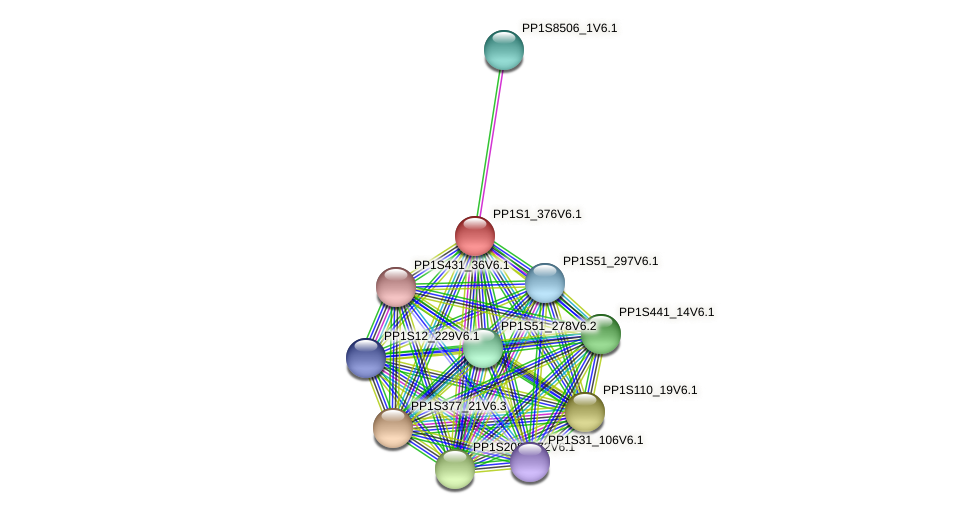 PP1S1_376V6.1 protein (Physcomitrella patens) - STRING interaction network