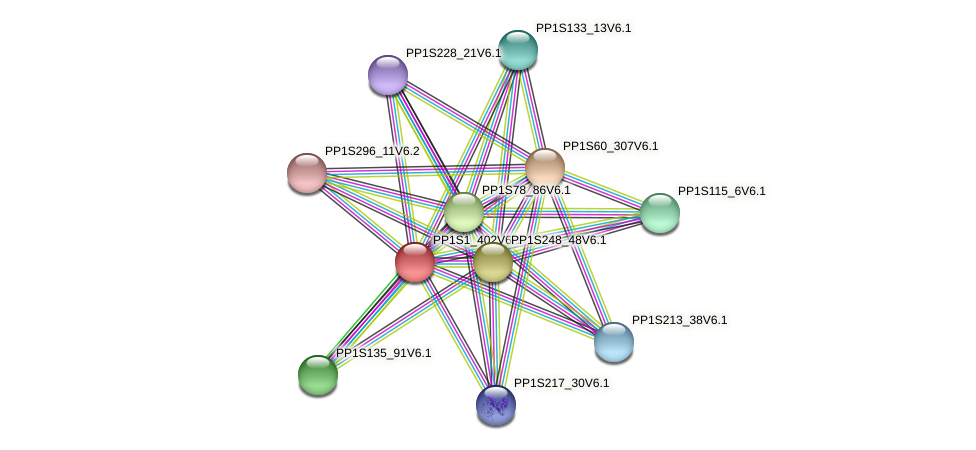 PP1S1_402V6.1 protein (Physcomitrella patens) - STRING interaction network