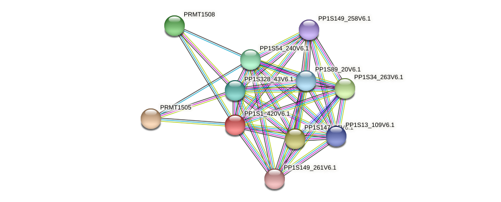 PP1S1_420V6.1 protein (Physcomitrella patens) - STRING interaction network