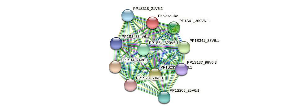 PP1S1_526V6.1 protein (Physcomitrella patens) - STRING interaction network
