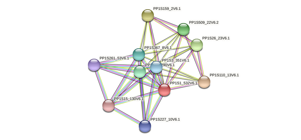 PP1S1_532V6.1 protein (Physcomitrella patens) - STRING interaction network
