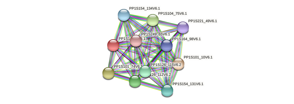PP1S1_549V6.1 protein (Physcomitrella patens) - STRING interaction network