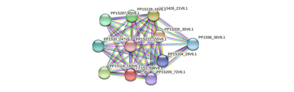 PP1S1_598V6.1 protein (Physcomitrella patens) - STRING interaction network