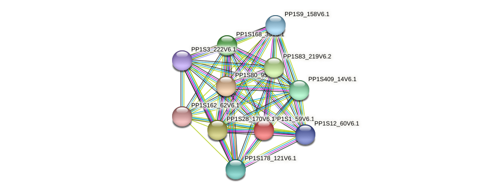 PP1S1_59V6.1 protein (Physcomitrella patens) - STRING interaction network