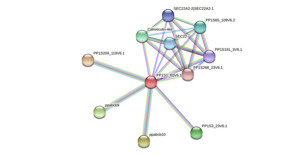 ppabcb7 protein (Physcomitrella patens) - STRING interaction network