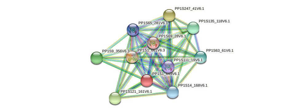 PP1S1_649V6.1 protein (Physcomitrella patens) - STRING interaction network