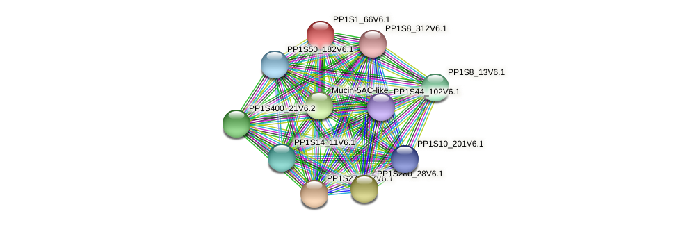 PP1S1_66V6.1 protein (Physcomitrella patens) - STRING interaction network