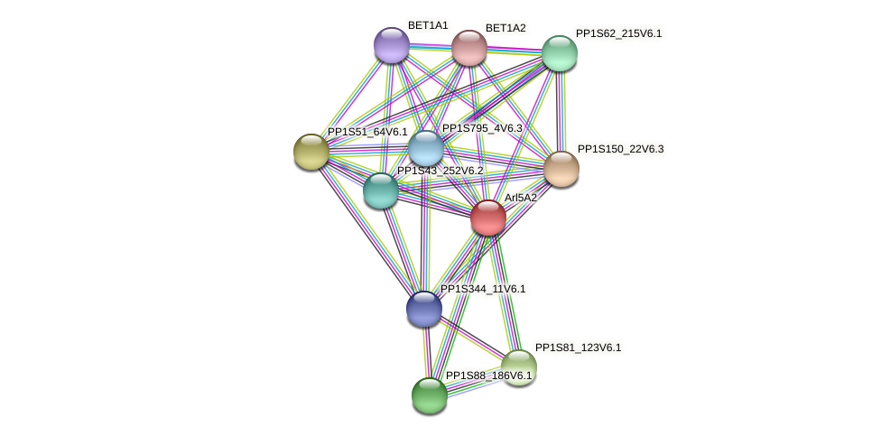 Arl5A2 protein (Physcomitrella patens) - STRING interaction network
