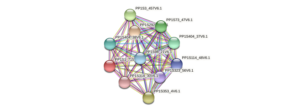 PP1S1_715V6.1 protein (Physcomitrella patens) - STRING interaction network