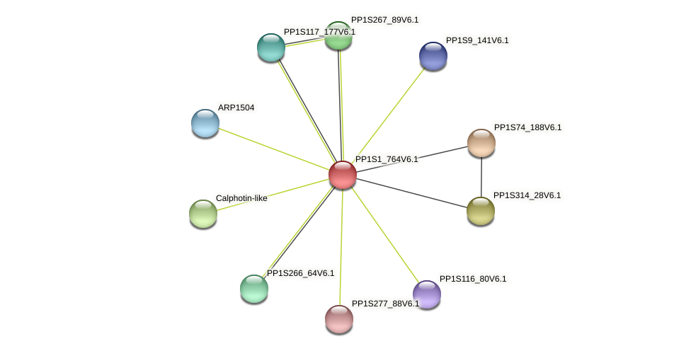 PP1S1_764V6.1 protein (Physcomitrella patens) - STRING interaction network